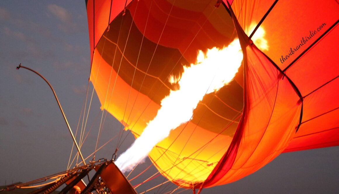 Hot Air Balloon Ride- Dubai